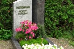 Herrmann_Horst